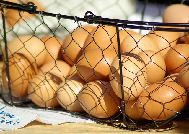 huevos artificiales para cluecas